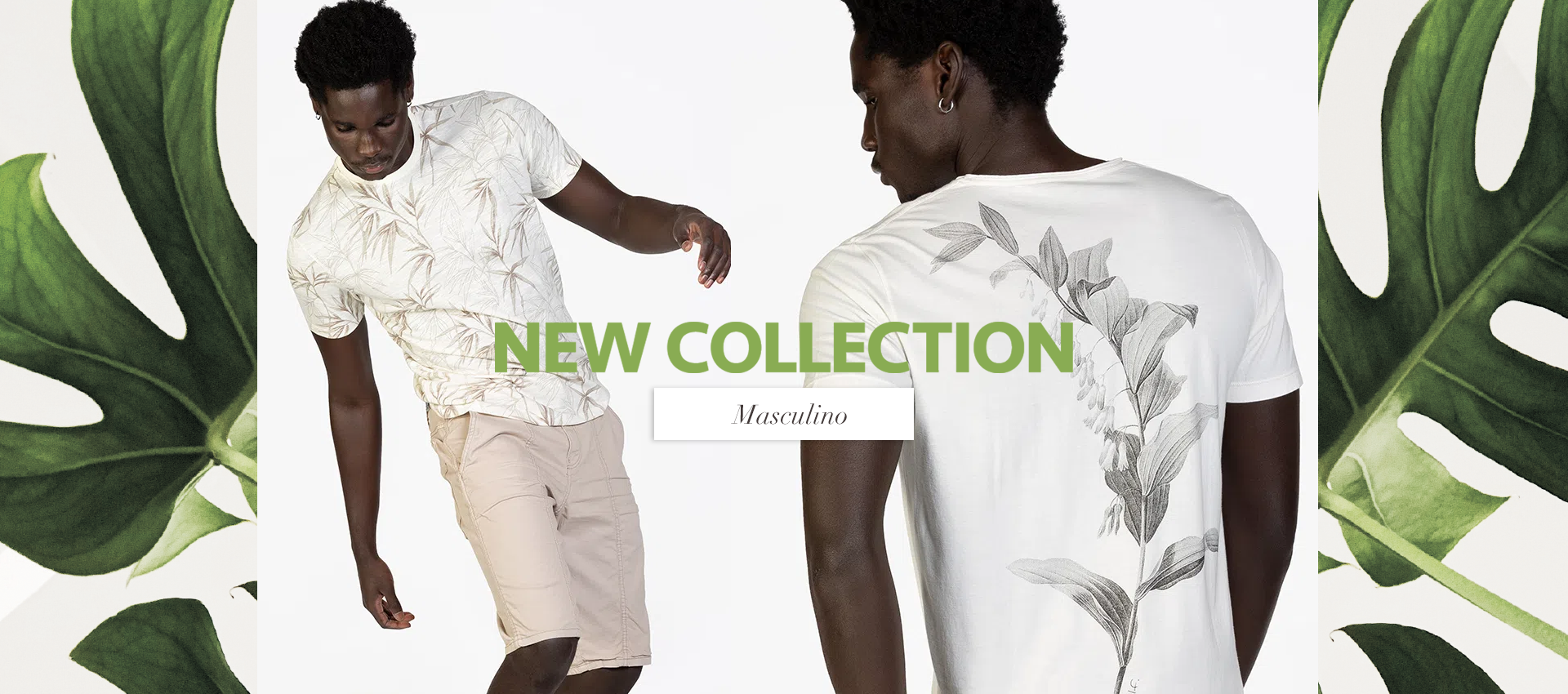 New Collection - MASCULINO